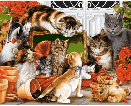 Картина по номерам Кошачья семейка