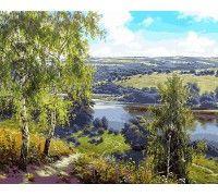 Картина по номерам Дорога к реке