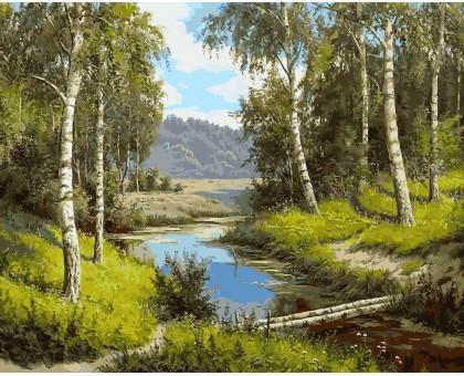 Картина по номерам Березовый мостик